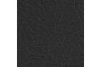 Зевс Блек